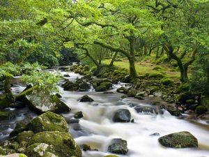 faery river