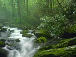 riverflow2